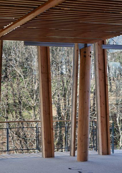 Jouant sur l'imaginaire de la forêt, l'architecte a travaillé les poteaux des structures comme des troncs d'arbres