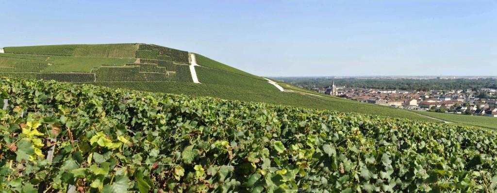 Usage réservé uniquement dans le cadre de la candidature Coteaux, Maisons et Caves de Champagne Unesco avec autorisation de l'association Paysages du Champagne