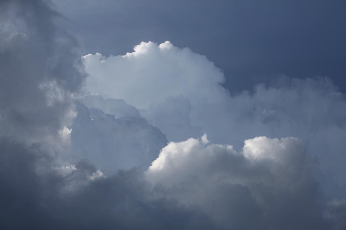 TPE-PME, comment réussir le passage à la neutralité carbone ?