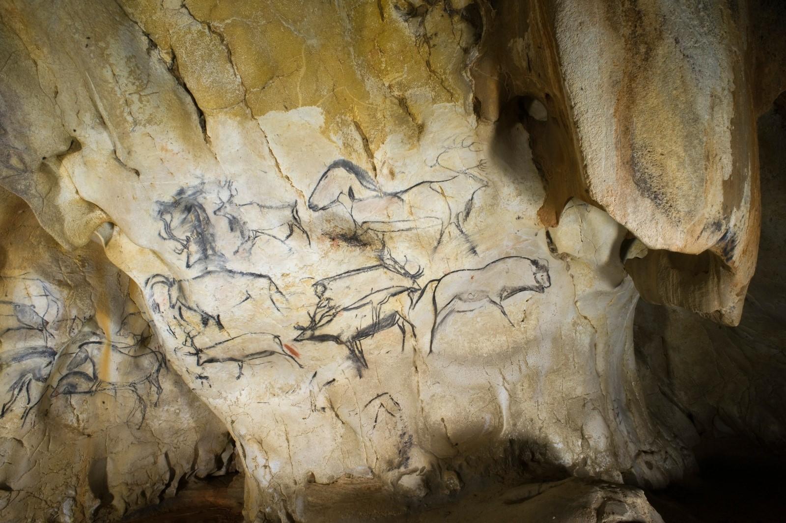 Photo du panneau des rennes de la grotte Chauvet-Pont d'arc, daté au carbone 14.