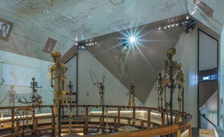 éclairage musée