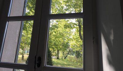 vue fenêtre jardin