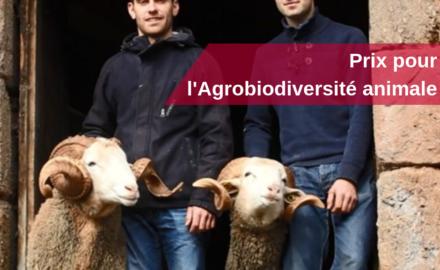 prix agro-biodiversite animale fondation du patrimoine