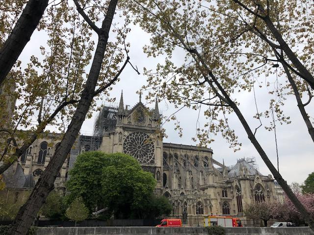 Refaire la charpente de Notre-Dame de Paris à l'identique en utilisant les outils contemporains