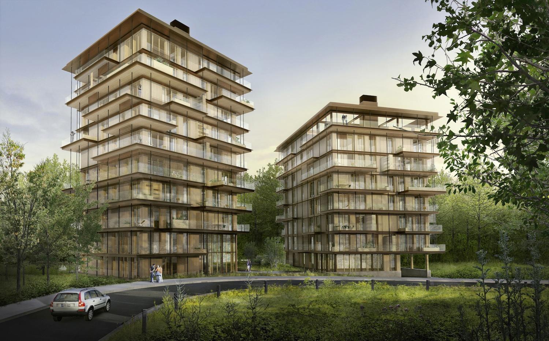 immeubles à vivre bois